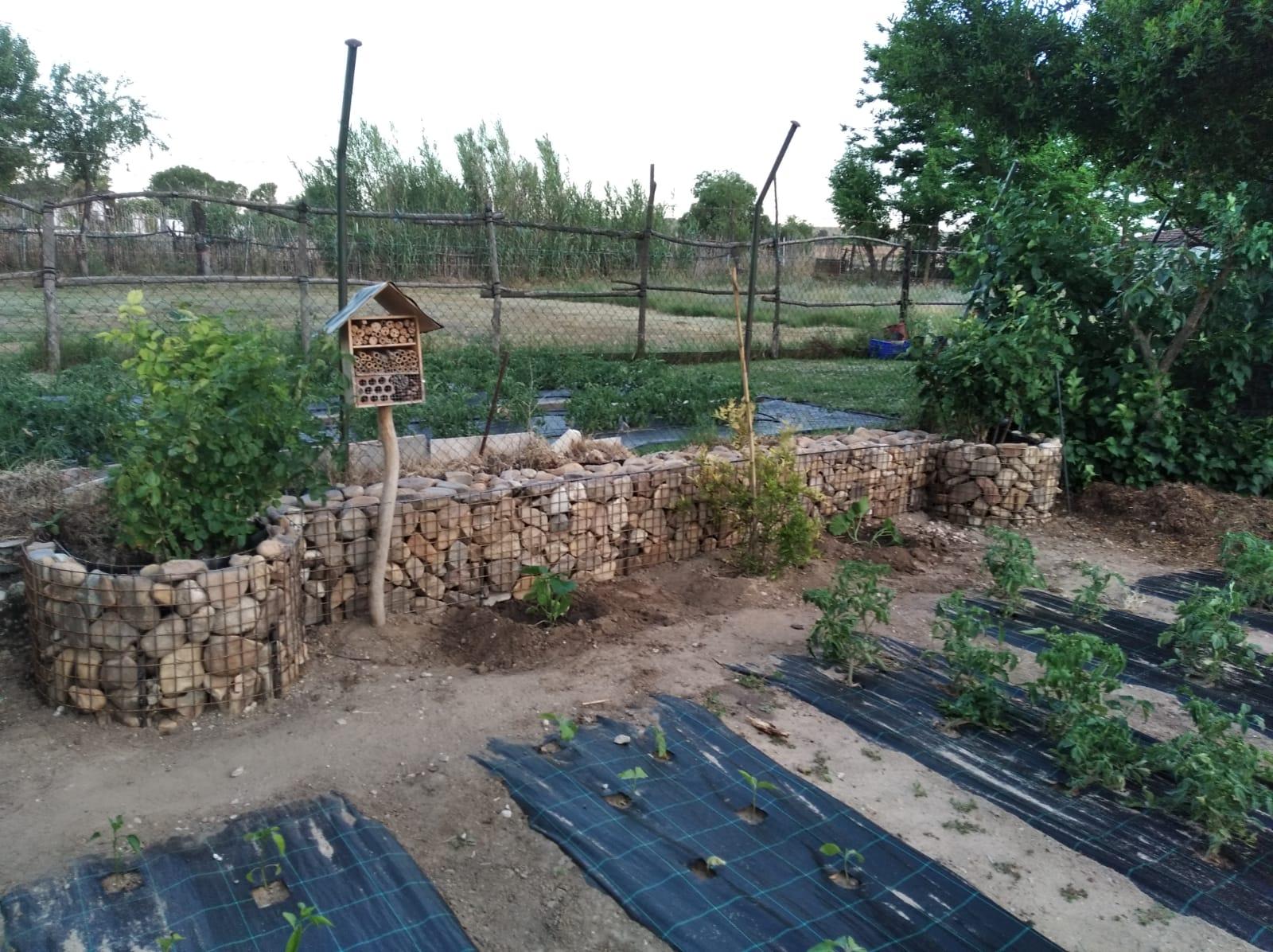 Rehabilitación de un muro con jaula de malla rellena